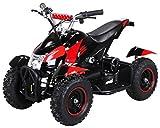 Actionbikes Motors Mini Kinder Elektro Quad ATV Cobra 800...
